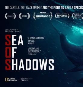 seaofshadows
